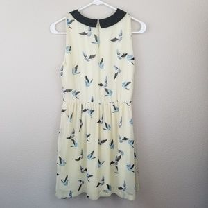 Zara Basic Yellow Bluebird Dress